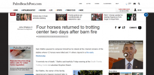 palm beach post thumbnail of four horses return article south florida trotting center