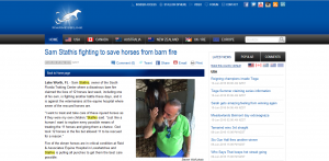harnesslink sam stathis fighting to save his horses